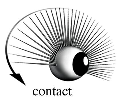 Contact Victor Stabin